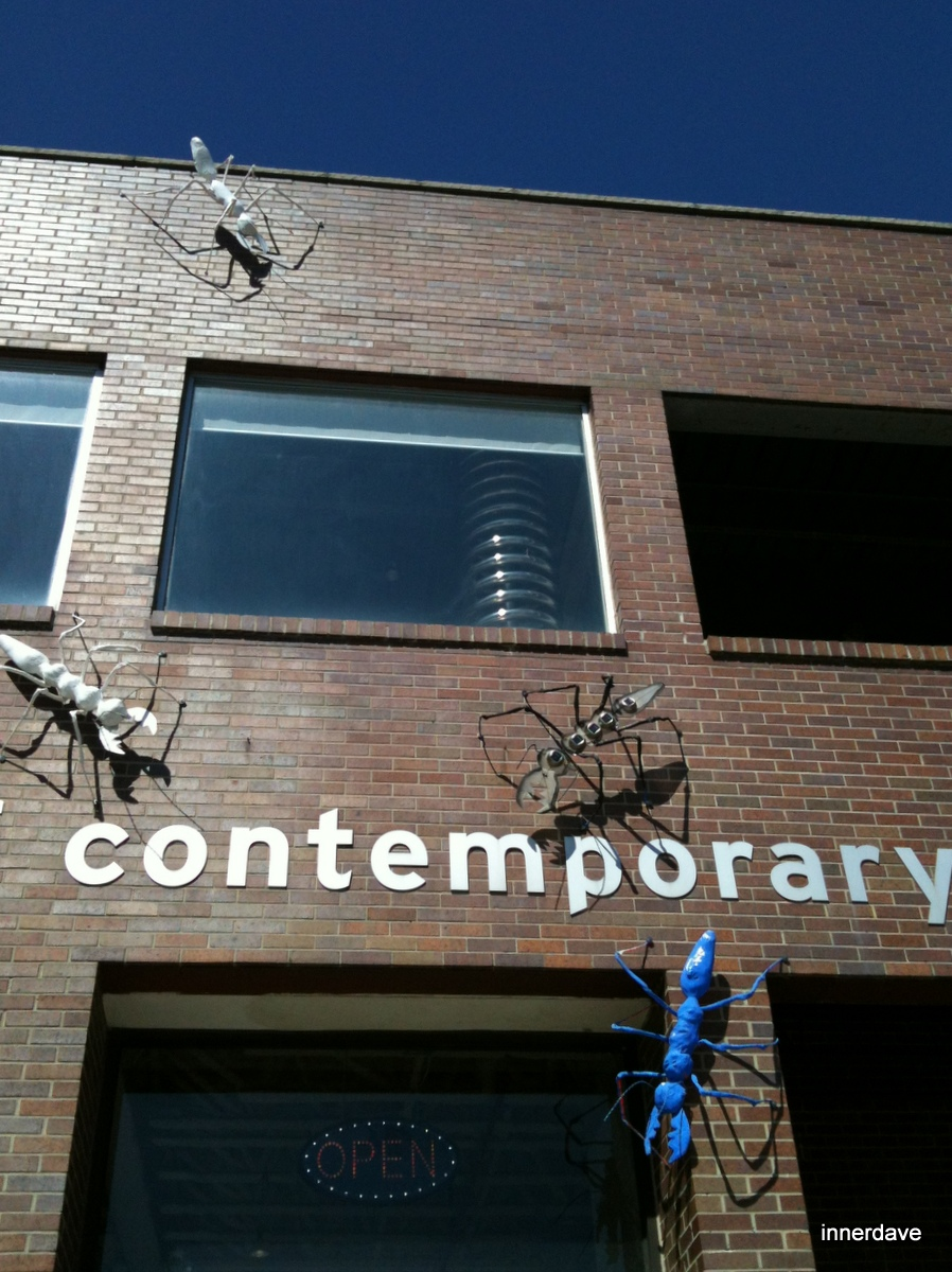 Contemporary Ants